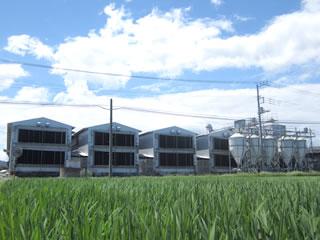 タカハシ養鶏場生産者 高橋ご夫妻